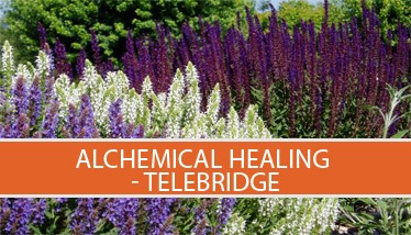 Alchem-heal-icon