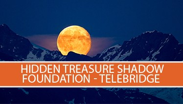 Shadow-telebridge-icon