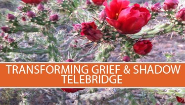 Trans-Grief-Shadow-telebridge-icon